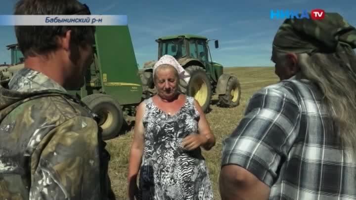 Царица бабынинских полей: Уборкой зерновых вхозяйстве руководит женщина-агроном