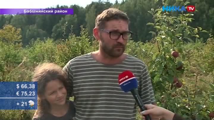 Абрикосы иперсики могут расти ивКалуге: Медиатур «Ники ТВ» поБабынинскому району