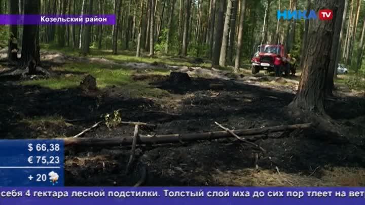 Переквалифицировались впожарных: Лесники самостоятельно потушили пожар