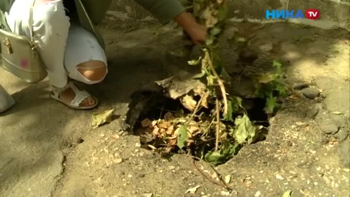 Провал прикрыли ветками: Наулице Комарова асфальт провалился посреди тротуара