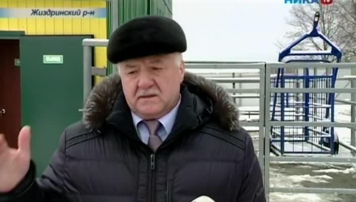 В Думиничском районе открылась ферма, в Жиздринском - цех по убою скота