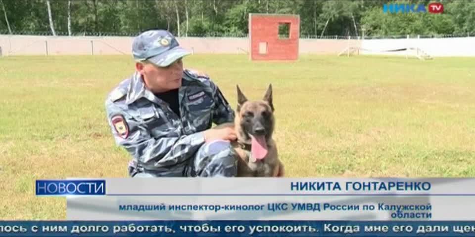 В Калуге открылся новый кинологический центр для дрессировок и разведения собак
