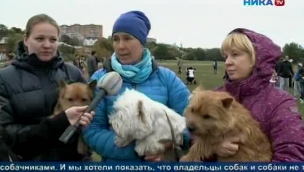 В калужском сквере Волкова прошел праздник «Пёс и я - спортивные друзья»