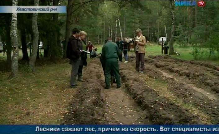 В Хвастовичском районе прошел ежегодный конкурс профессионального мастерства работников лесного хозяйства
