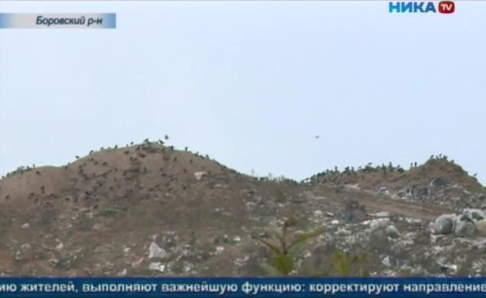 Сотни жителей деревни Тимашово Боровского района вышли на защиту зеленой стены, которая отделяет их от полигона ТБО