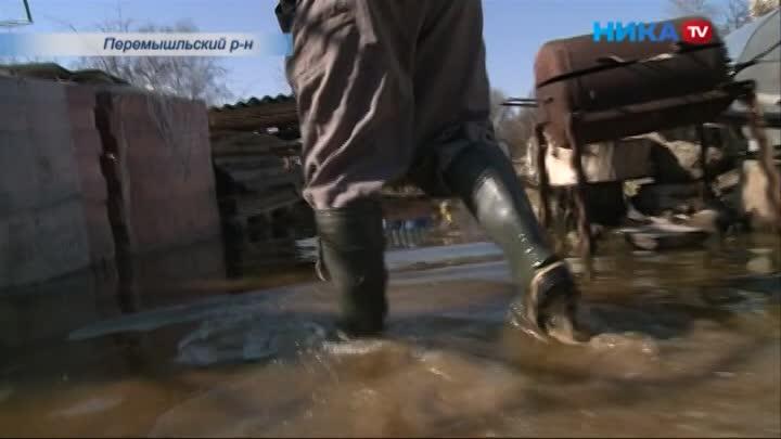 Жители Перемышля третью весну подряд страдают от масштабного подтопления домов и участков