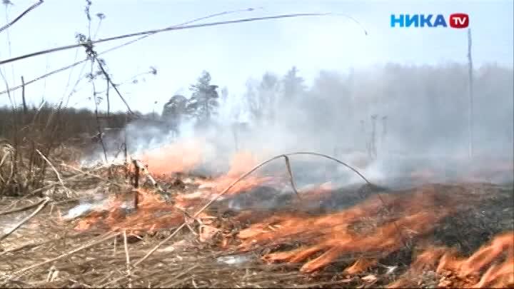 Недобрая традиция: в выходные в Калуге и области повсюду горит трава