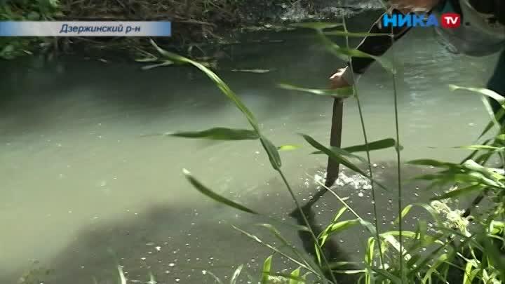 Ивсё равно плохо пахнет: Река Сечна по-прежнему загрязнена