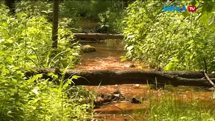 Целебная или ядовитая вода вбезымянном ручье вдеревне Екатериновка, выяснят специалисты