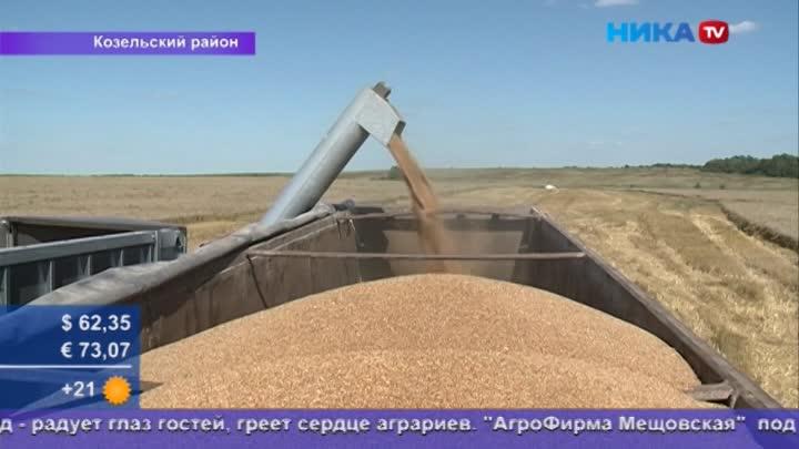 Вышли вполе: Районы приступили куборке зерновых